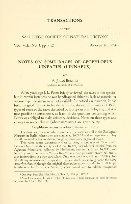 Notes on Some Races of Ceophloeus lineatus (Linnaeus)
